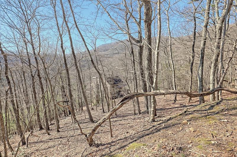 183 Deer Run Ridge (69).jpg
