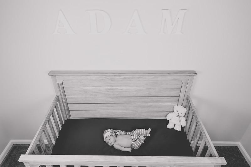 AdamNoah-86.jpg