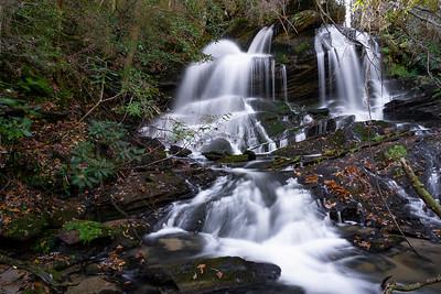 Filmy Fern Falls