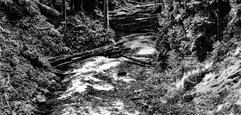 Idaho river 2011.jpg