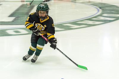 Hanover Hockey Thompson Arena 3-19-17