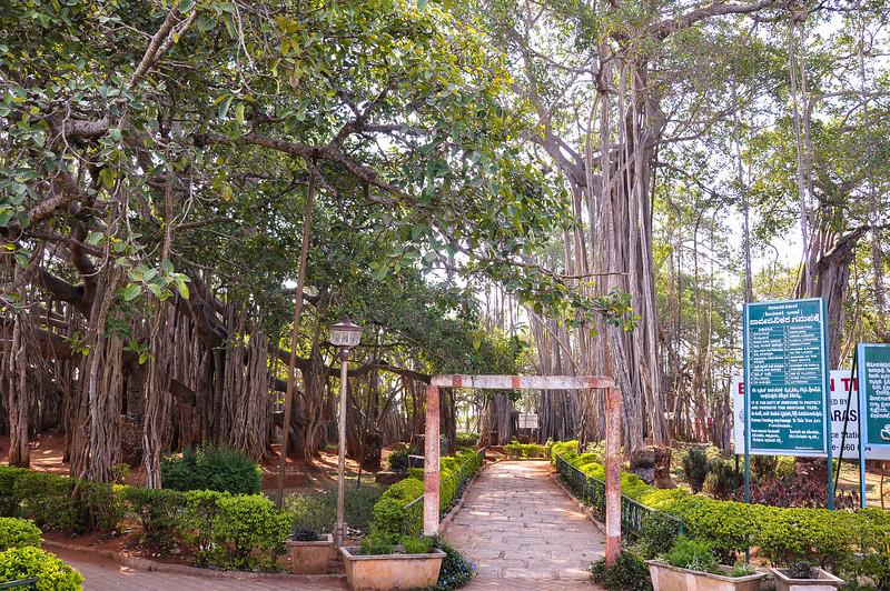 2014-03 On Road to Mysore 015.jpg