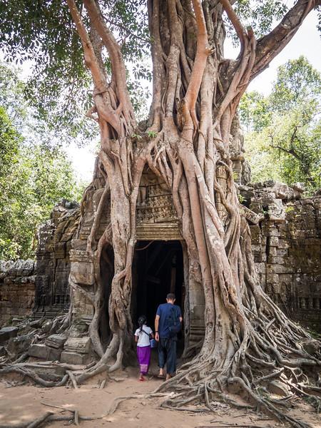 Banteay Srei, Pre Rup, East Mebon, Ta Som, and Preah Khan