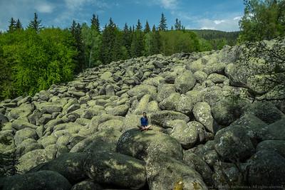 Vitosha Mountain May 2015