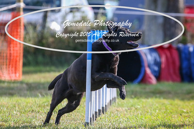Large Agility Combined 1-3
