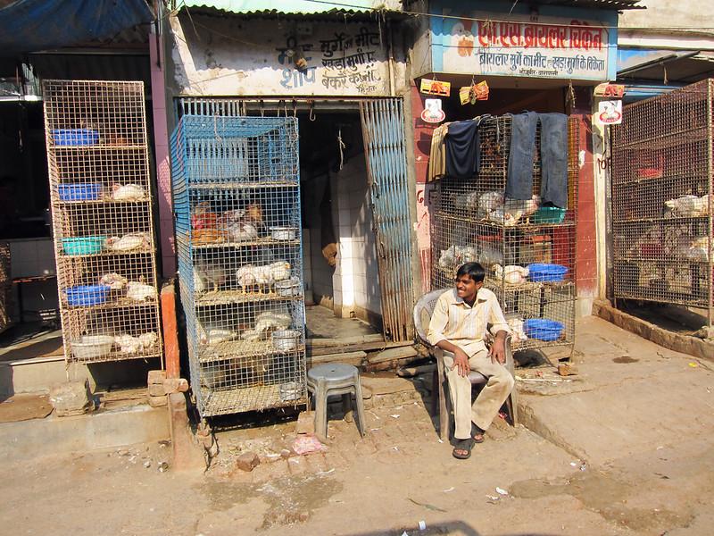 India 2009-012.jpg