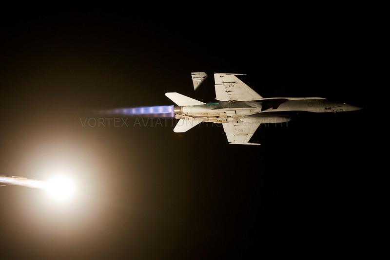 Airshow Downunder 2011 (Avalon)