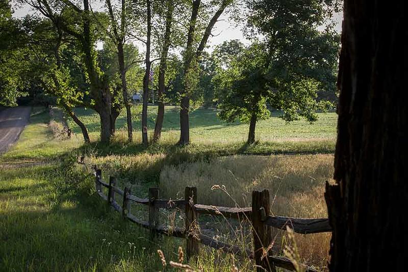 Z73A9194-fence-www.jpg