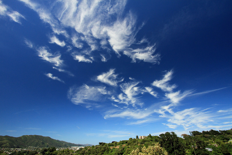 Cirrus clouds over Lower Hutt, 10:30am (approx), 23 December 2010.