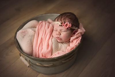 Tayvani Eve Newborn