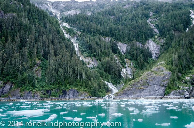 Glaciers-0199.jpg