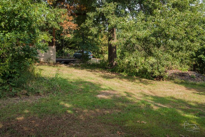 The big oak area