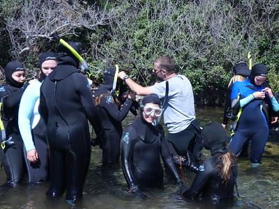 MERP at Big Creek
