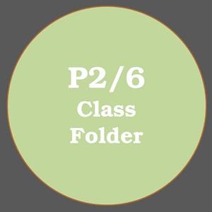 P2/6 ACTIVITIES