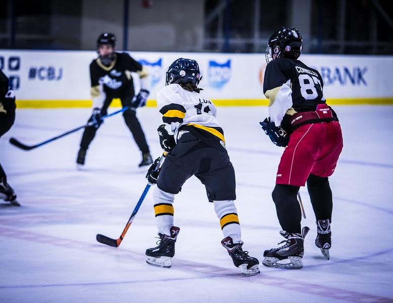 Bruins-228.jpg