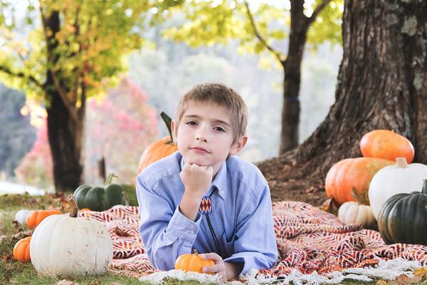 Mason Fall Mini