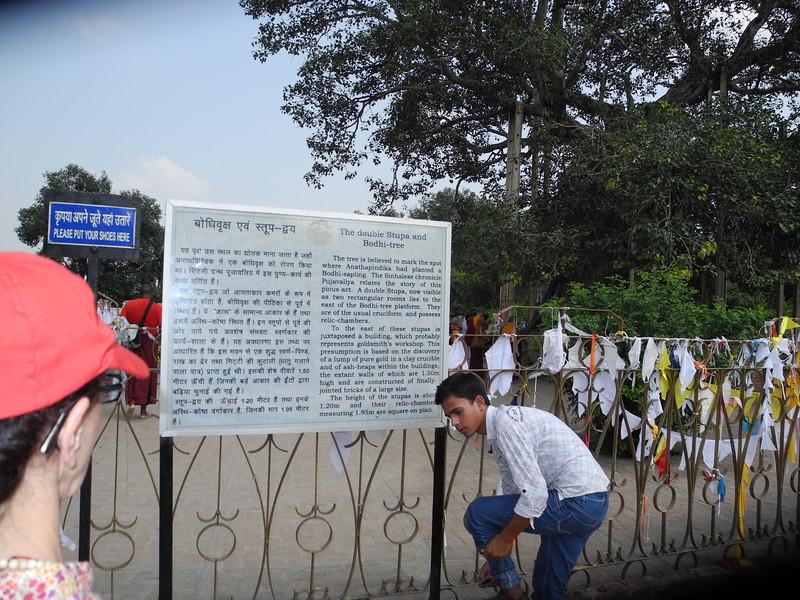 india2011 754.jpg