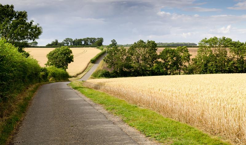 The lane to Hinxton