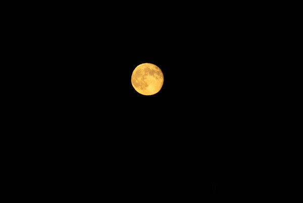 Lunar Eclipse & Moon