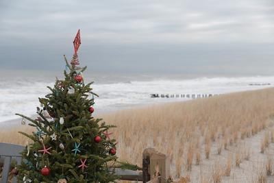December 2020 Shore Scenes