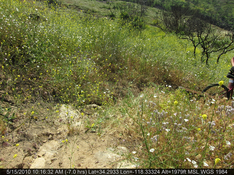 20100515016-Doc Larson Trail Recon.JPG