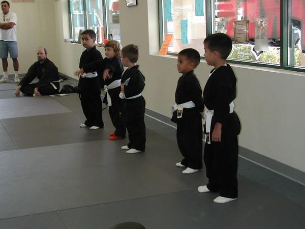 Ninpo Taijutsu Martial Art