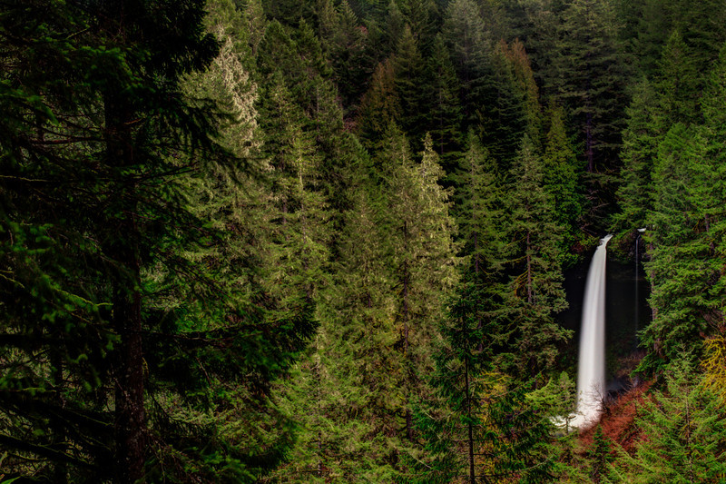 Silver Falls state park that houses the famous Trail of Ten Falls is the largest of the Oregon State Parks. If it is the home of handful of gorgeous waterfalls, it has to be large, right. This forest area by virtue of almost 80 inches annual rainfall is part of the rarely occurring temperate rainforests of the coastal pacific northwest.   Continue to Read @ the Blog Like The Ocean