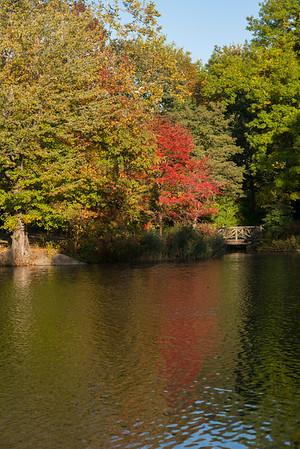 Central Park 10-26-2013