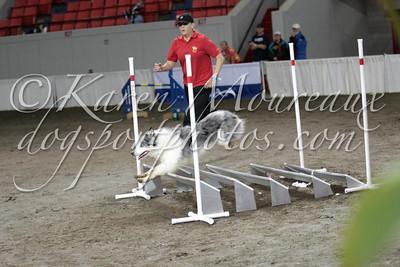 Steeplechase Quarterfinals
