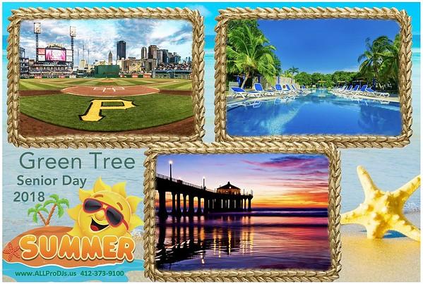2018  07-29  Green Tree Borough Sr. Day