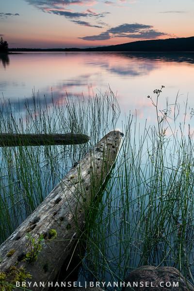 Old Log on Two Island Lake