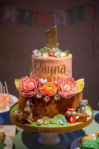 Rayna's 1st Birthday Party
