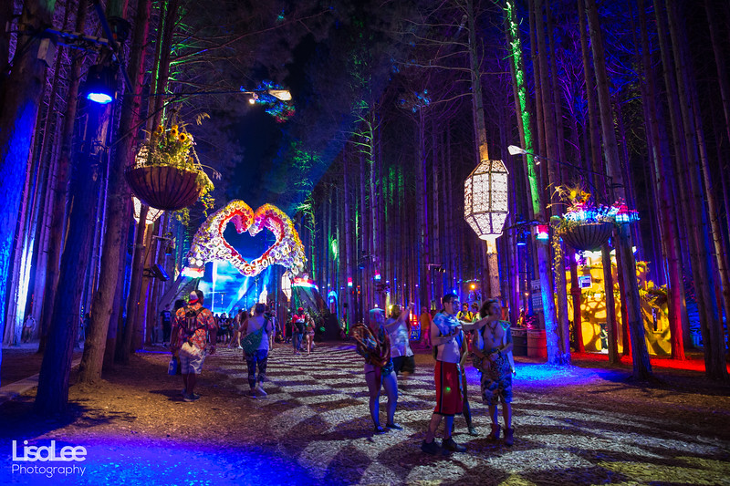 2018-06-30_ElectricForest_19.jpg