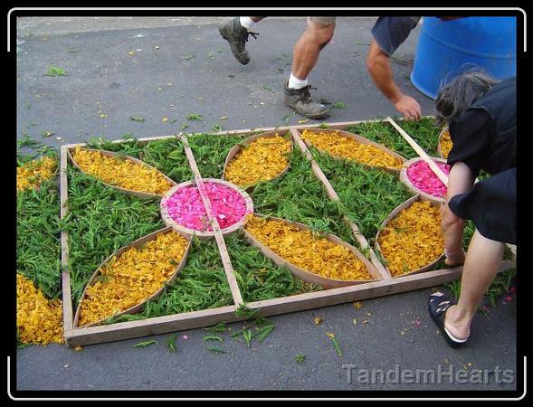day-2-procession-flower-carpet-2.jpg