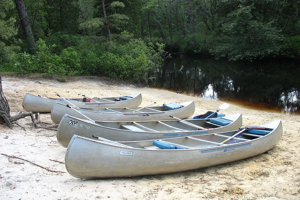 Pine Barrens Canoe and Camp - June 2006