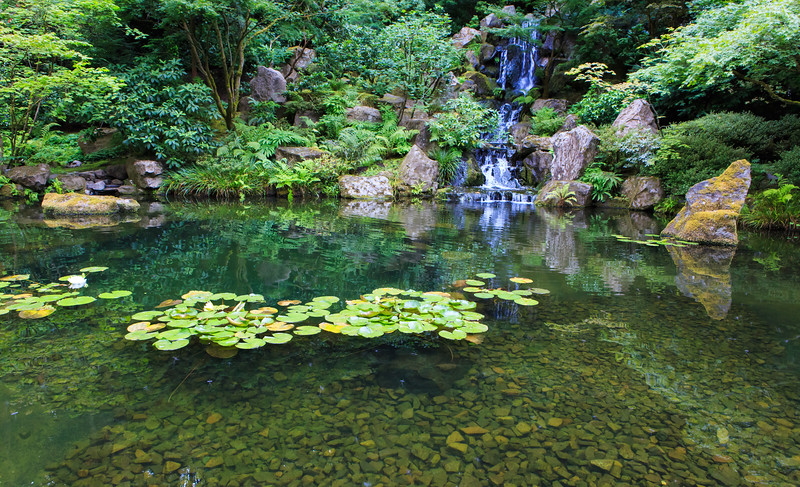 Green Japanese Garden Landscape