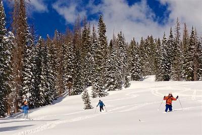 Off-Trail at Alberta