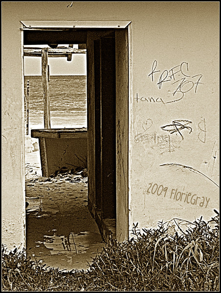 Beautiful Decay 