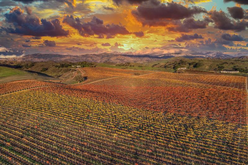 Santa Ynez Valley 18