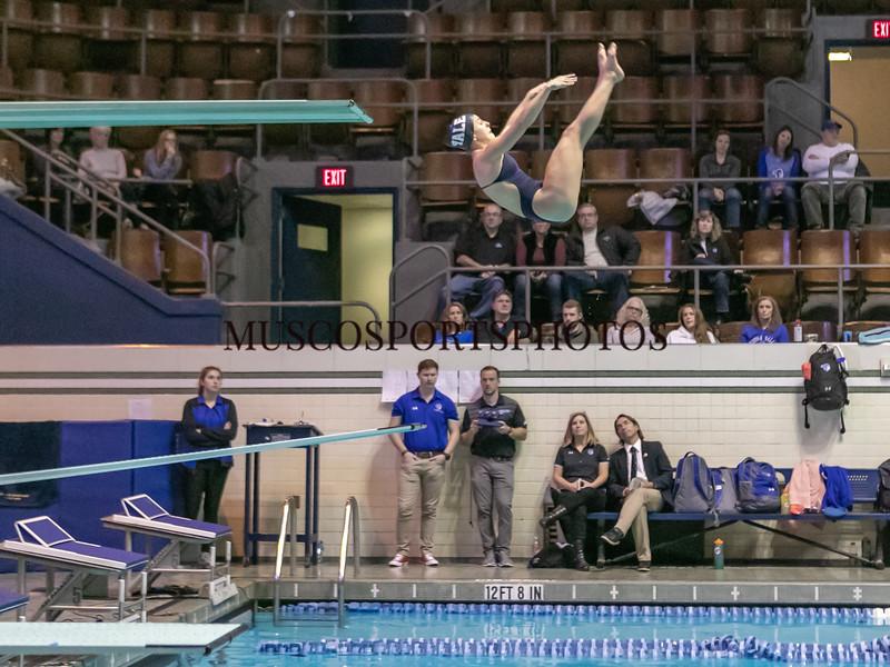 Swimming-diving vs Seton Hall_1242.jpg
