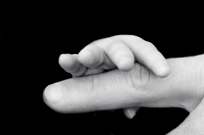 A hand to grow.jpg