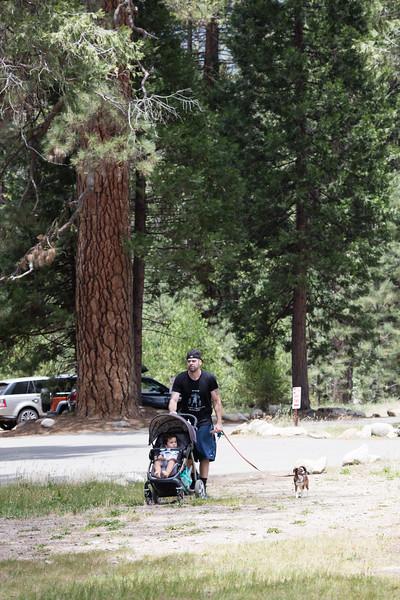 Yosemite_2016-4.jpg