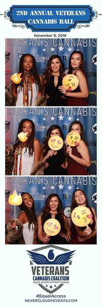 2nd Annual Veterans Cannabis Ball Prints