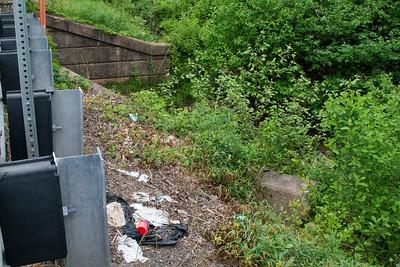 Little Tuscarora Creek litter May 7, 2012