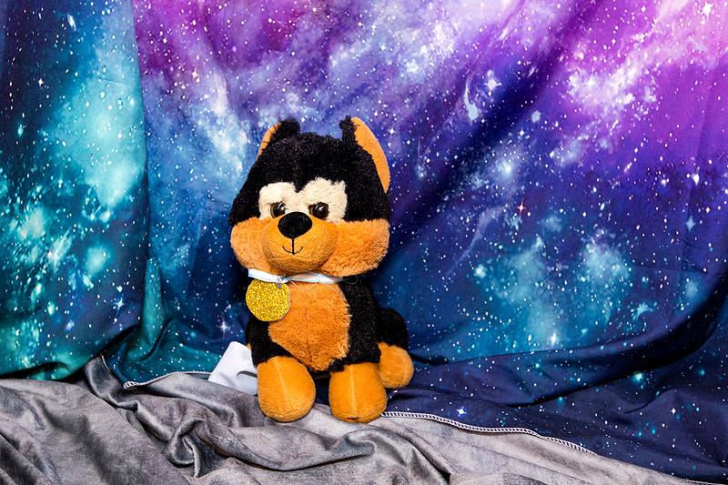 Stuffie-Day-0108.jpg
