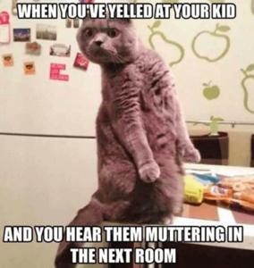 funny-parenting-memes-7-1.png