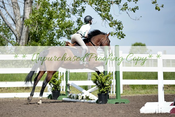 Jumping Show 5-28-17