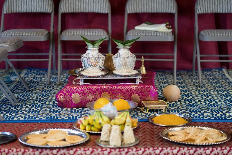 Erin_Harsha_Hindu_Wedding-1.jpg