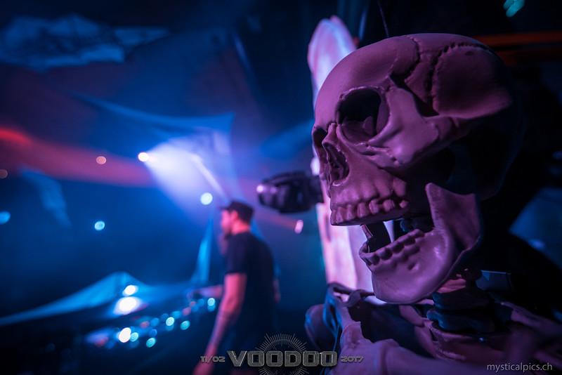 Voodoo_2017_050.jpg