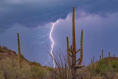 Arizona Monsoon
